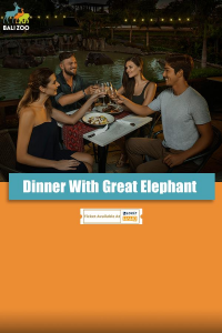 Dinner with Great Elephant