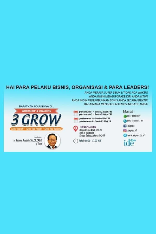Workshop & Coaching 3 Grow (Grow yourself, Grow your people, Grow your business)